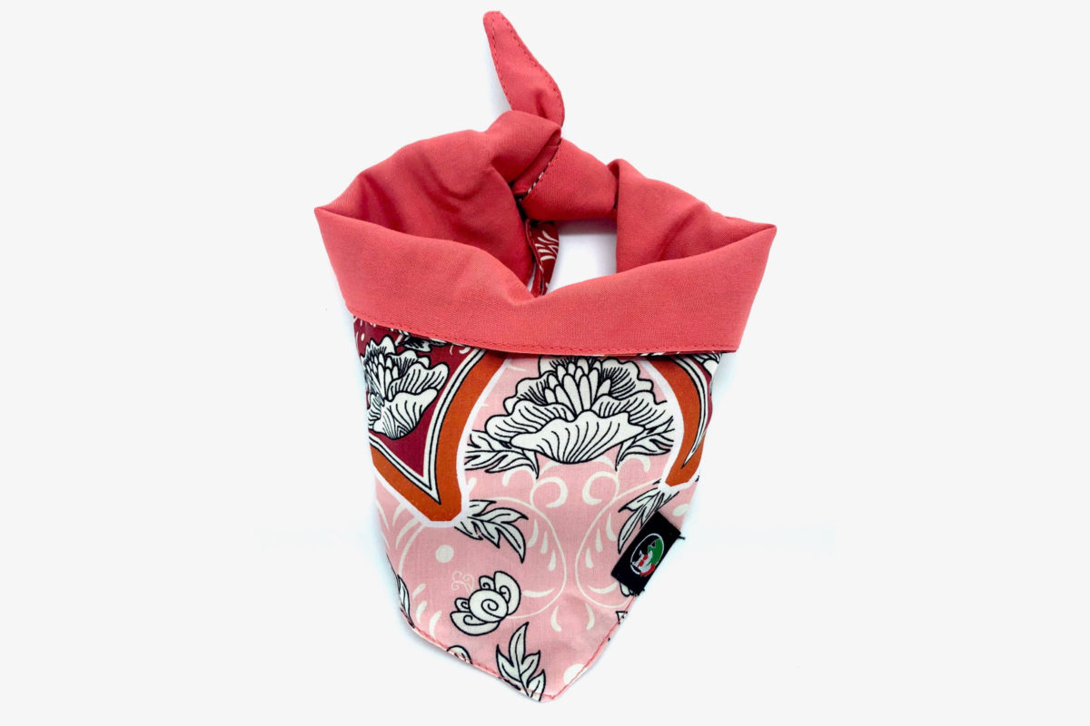 Sustainable Dog Bandana: CariocaPup Karioka bandana