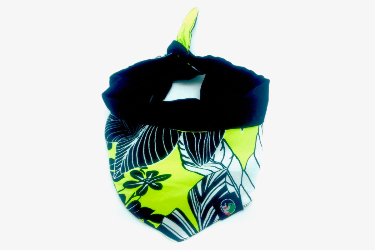 Eco-friendly dog bandana: CariocaPup Samba bandana