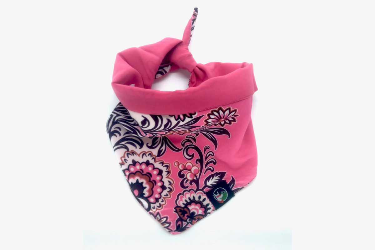 Environment-friendly dog bandana: CariocaPup Frenzy bandana