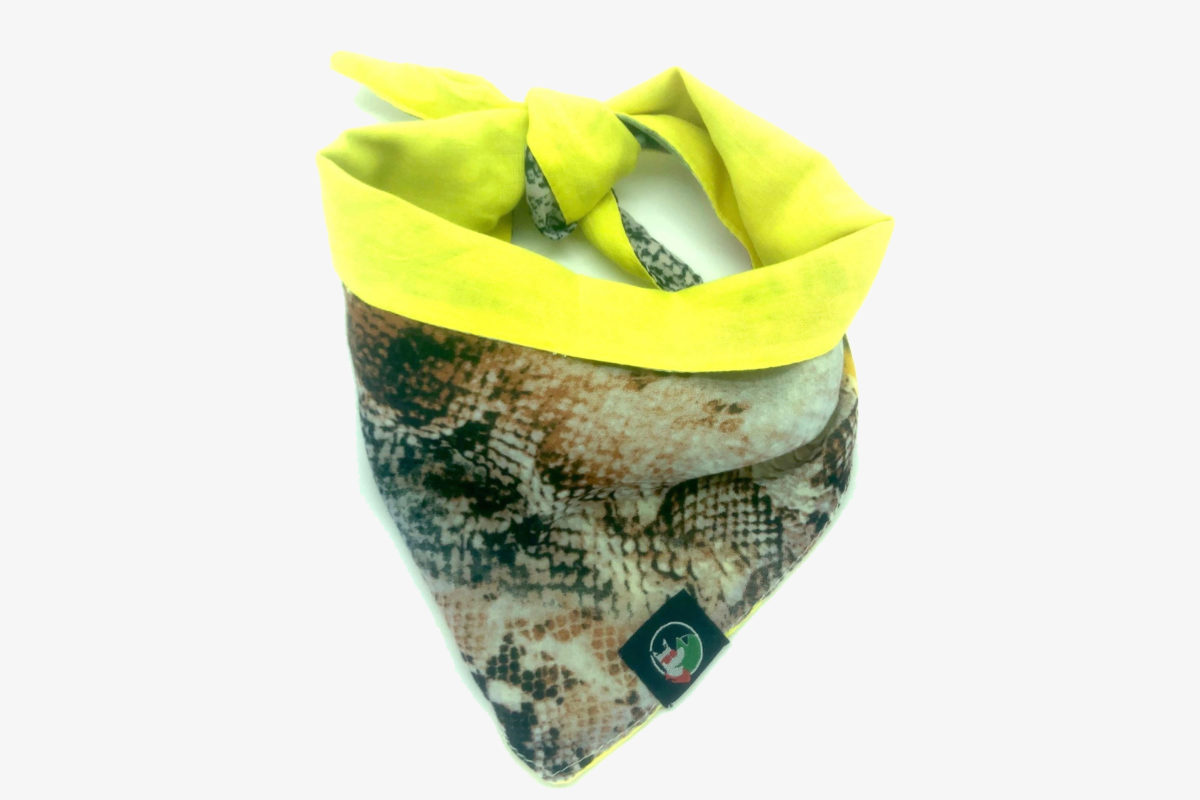 Sustainable Dog Bandana: CariocaPup's Carnival bandana