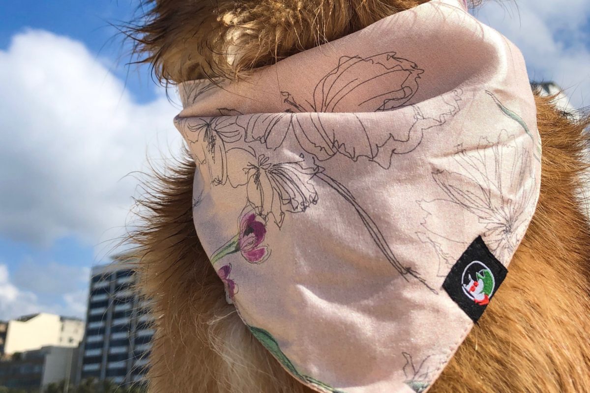 Sustainable pet bandana: CariocaPup Maracatu bandana