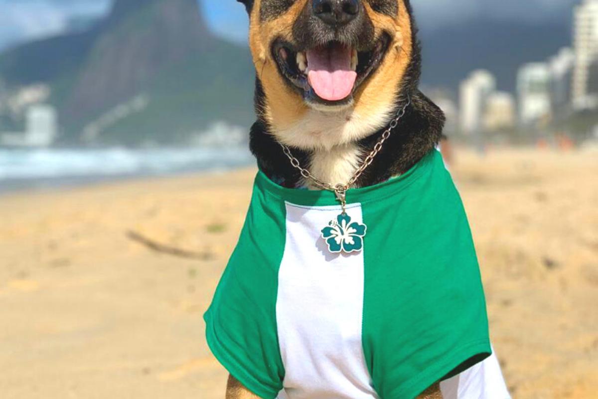 CariocaPup: camiseta ecologica IPANEMA