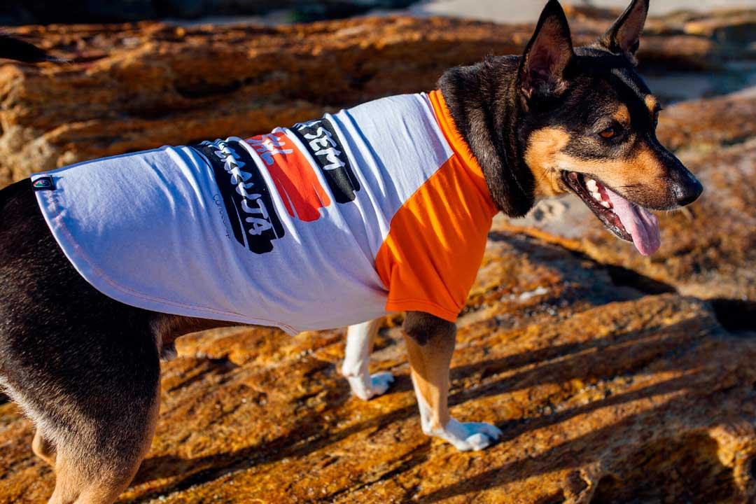 Camiseta para cães ecológica